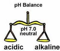 pH Blance Scales